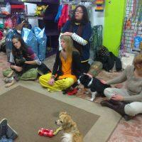 2ª Charla taller de Reiki para animales en Zona Animal