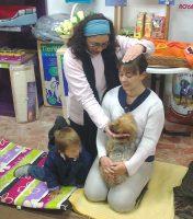Charla taller de Reiki para animales en Zona Animal